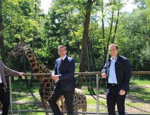 Hoher Besuch im Zoo Schmiding